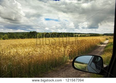 idealistic summer landscape with road and meadows