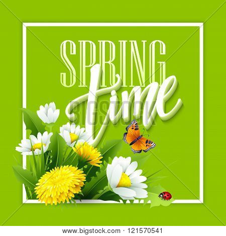 Inscription Spring Time on background with spring flowers. Spring floral background. Spring flowers.