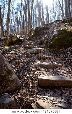 Rock steps on a hiking path
