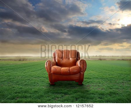 empty leather armchair in a grass field