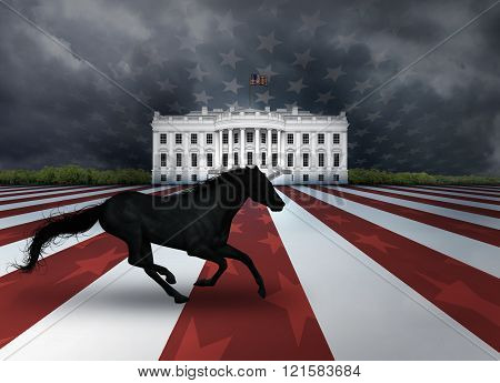 Digital illustration of the White House, a flag design, and a dark horse representing a relatively unknown candidate who arises to win a presidential nomination or election.