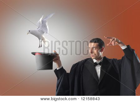 Portrait of a magician letting a dove flying out of his hat