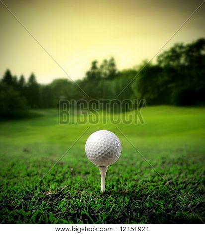 Illustration of a golf ball on a green meadow
