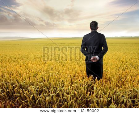 Portrait of a businessman standing in a cornfield and observing the sky in front of him