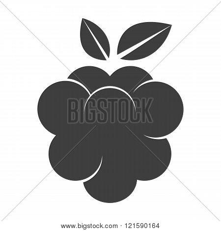 Raspberry icon silhouette