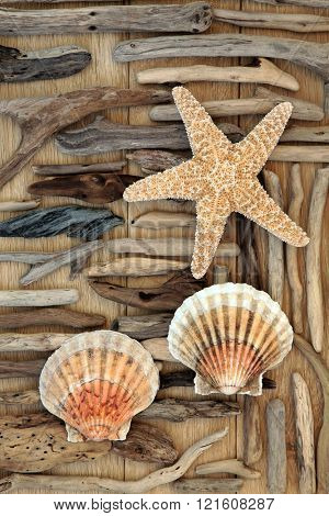 Starfish, driftwood and scallop shell abstract background over oak wood.