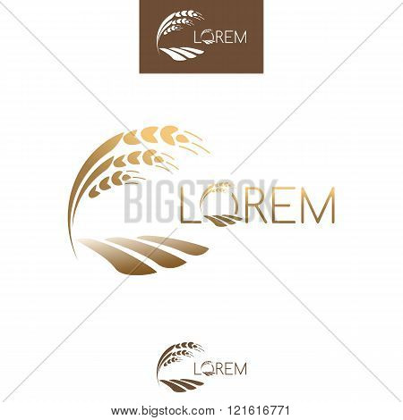 Sprout Grain Logo, Gold Ripe Seedling, Growing Plant. Vector Template Illustration.