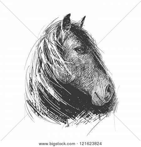 Illustration Of A Horse's Head, Made In The Style Of Woodcut. Handmade. Suitable For Tattoo