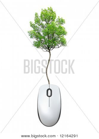 Mouse with its cable ending with a tree