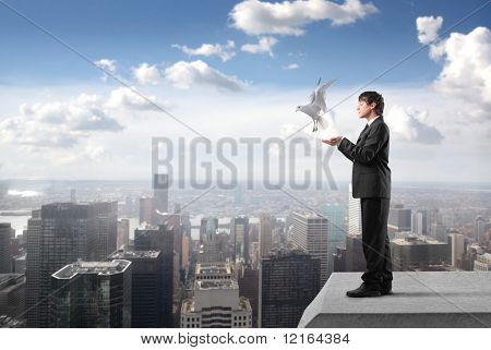 Businessman with dove flying from his hands on the rooftop of a skyscraper