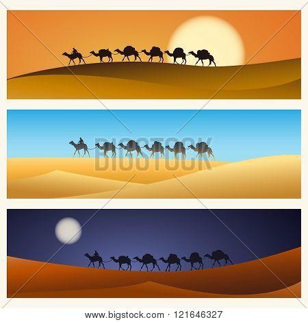 Caravan of camels in desert