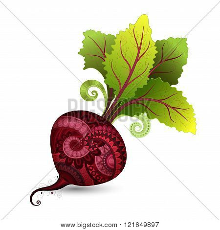 Vector Colored Decorative Beet With Top