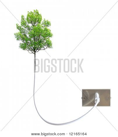 Tree attached to a light socket