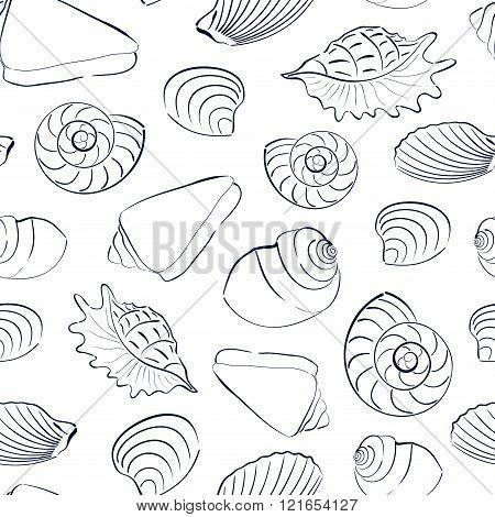 Seashells white seamless background