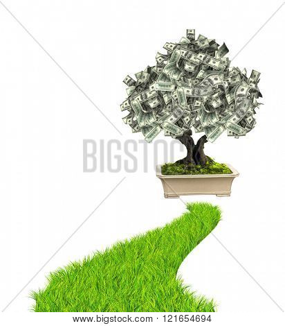 3d money tree dollar banknotes and road with green grass. Isolated on white background