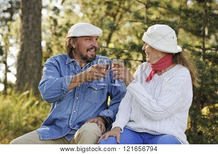 Senior couple toast each other outdoors in the countryside.