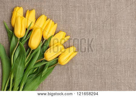 Mothers Day background.Tulips bouquet on sackcloth