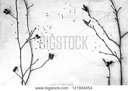 Dry branches of alder on the white table black and white horizontal background