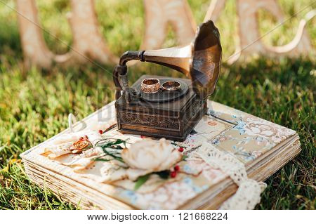 Rings With Small Gramophone On Grass