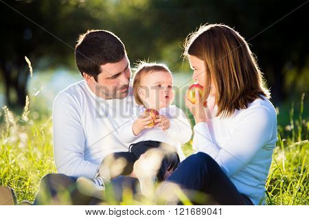 Parents holding their little son, eating apples, sunny nature