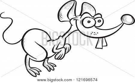 Cartoon Mouse Contour