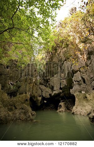 emerald bay, sea cavern and mangrove trees