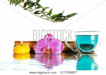 Orchid And  Turquoise Bufferli Pea Tea