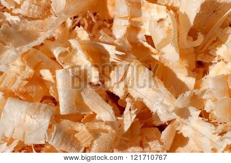 Wood Chips, Sawdust Texture