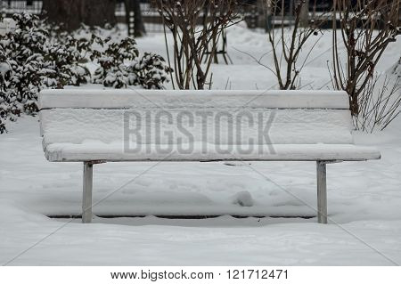 Snow covered wooden park bench in winter forest