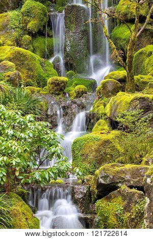 Waterfall at Japanese Garden with green moss on rocks in Spring Season