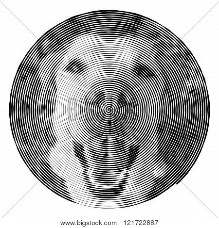 Vector spiral with the dog.
