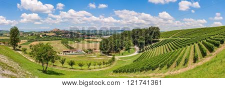 View of green fields and vineyards under blue sky with white clouds in Piedmont, Northern Italy (panorama).