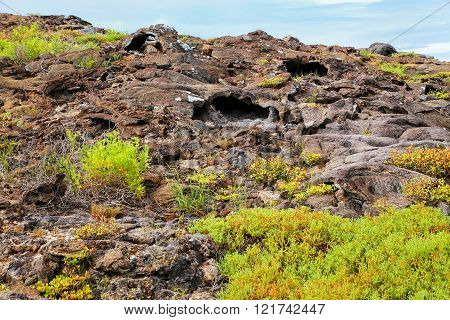 Lava tubes on Chinese Hat island in Galapagos National Park, Ecuador.