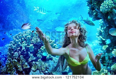 Girl is diving under water  amoung coral fish.