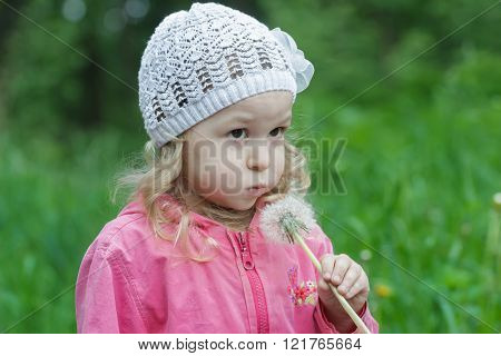 Little girl with fair hair blowing on white dandelion seed head