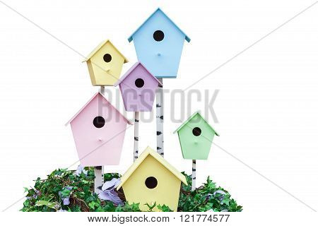 wooden houses for birds of different colors hanging on trees in spring