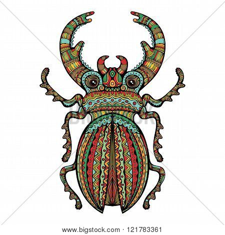 Colorful Ornate Giant Stag Beetle