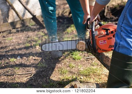 Man cuts tree with chainsaw concept of deforestation. Selective focus