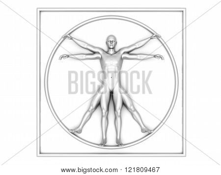 3d rendered interpretation of the famous Leonardo DaVinci sketch.