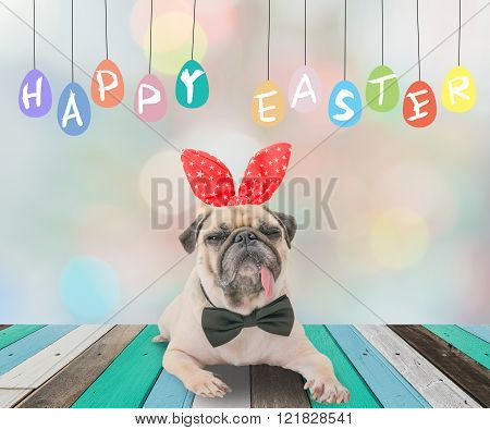 Happy Easter Day 's Post Card With Cute Dog Pug Wearing Rabbit Bunny Ears Sitting Next To A Pastel C