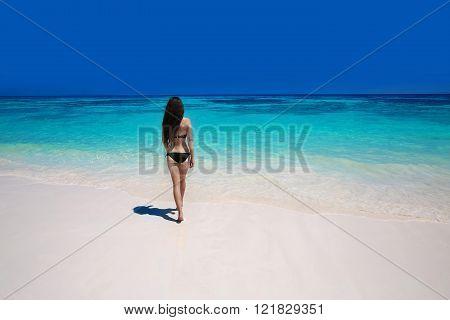 Suntanning Bikini Woman Walking On Tropical Beach, Back Outdoor Human Shot, Healthy Girl With Long H