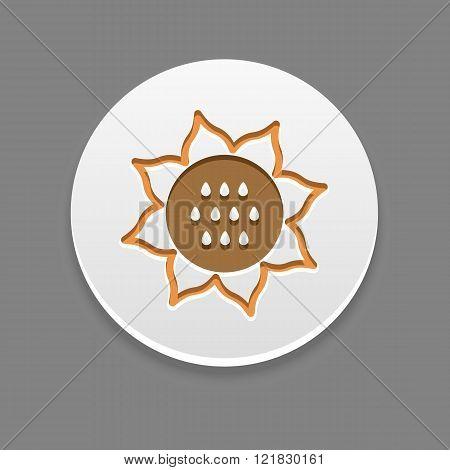 Sunflower Icon. Vegetable Vector Illustration