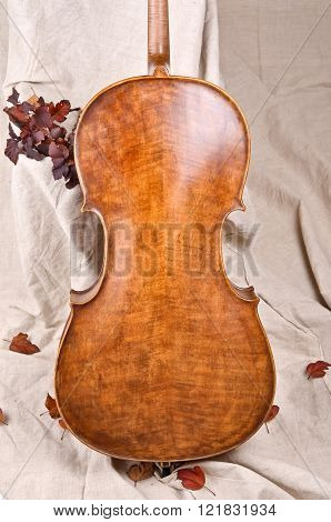 violoncello back and autumn leaves on beige