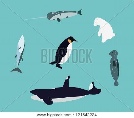 Animals of Antarctica. Killer Whale, seal, narwhal, polar bear, tuna, penguin.
