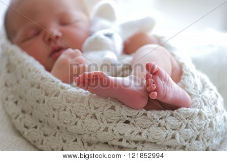 Portrait sleeping newborn baby  Portrait sleeping newborn baby