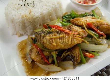 Sprinkle tilapia fried spicy ginger and chili in oil palm.
