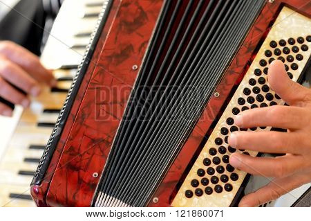 Someone who plays the accordion in natural light ** Note: Shallow depth of field