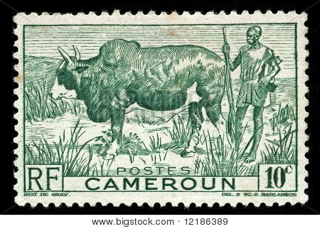 vintage stamp from Cameroon depicting tribal farmer with his cow