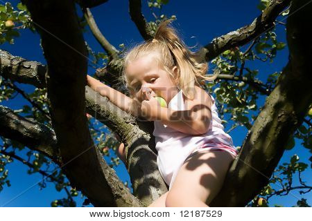 A cute young girl eating a delicious fruit sitting in an apple tree