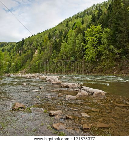 River In Carpathians Mountains In Spring